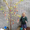 Hanging Our Wishes on the Wishing Tree